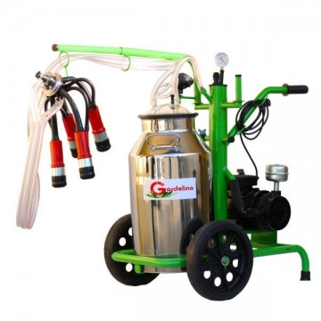 poza Aparat de muls vaci 240 Inox PC Gardelina Green Line A18000800 2 posturi, 40 L